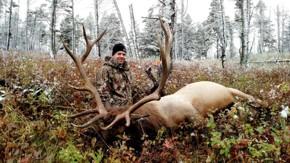 Montana Elk Hunting | Guided Elk Hunts In Montana