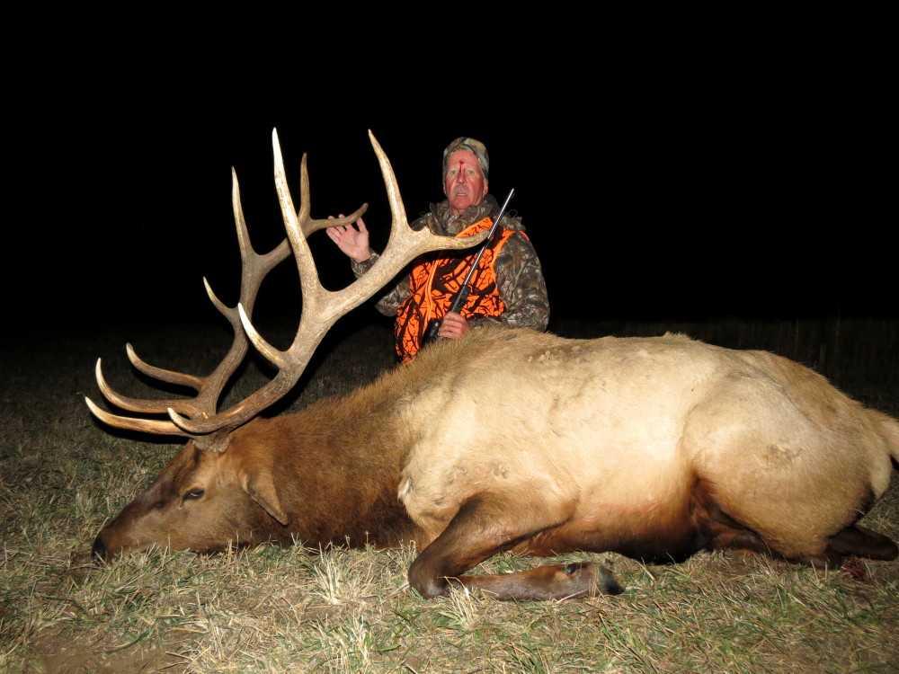 Montana elk hunting trips